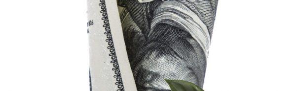 Warum sollen wir Steuern zahlen?
