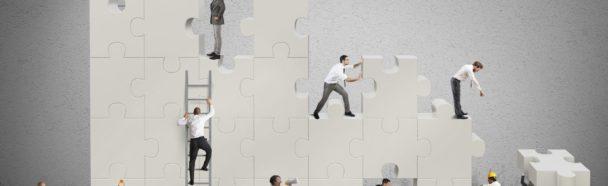 IT-Services, Offshoring und Kooperationen: Outsourcen oder aufbauen